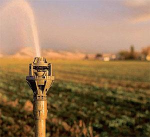 Các phương pháp tưới trong nông nghiệp
